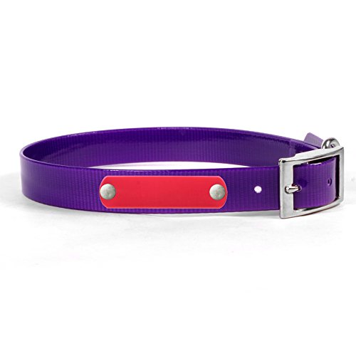 Personalized Waterproof Purple Dog Collar with Pink Nameplate for Small Dogs - (Size - Haus Bag Art