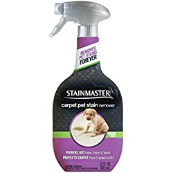Stainmaster Carpet Pet Stain Remover, 22 fl oz (Packaging May Vary)