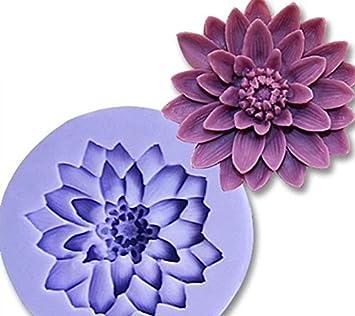 Nouveau style Fleur Silicone Moule Sucre Résine Artisanat DIY Moules DIY Gomme Pâte Fleurs Décoration De Gâteau Fondant Moule de kangqi (Couleur : Random)