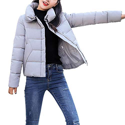 ❤ Abrigo Corto para Mujer Invierno, cálida Piel sintética con Capucha Cremallera Gruesa cálido Abrigo Chaqueta Delgada Capa de Abrigo Absolute: ...