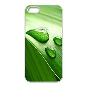 For Ipod Touch 4 Phone Case Cover Leaves Drew Hard Shell Back White For Ipod Touch 4 Phone Case Cover 335838