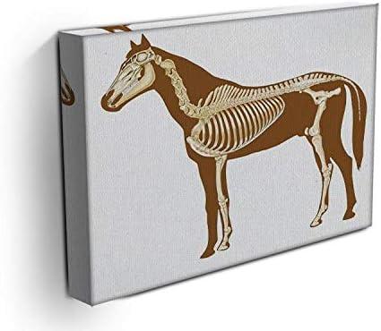 Lienzo impreso de esqueleto de caballo con radiografía de huesos, diseño moderno en giclée, tela, 36in x 26in | 90cm x 65cm