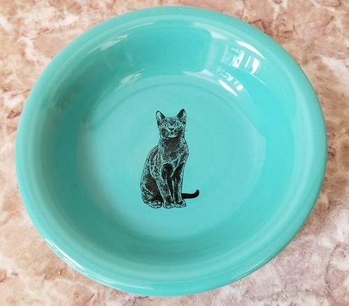 Fiesta Fiestaware Homer Laughlin Fruit Bowl w/Black Cat - Turquoise