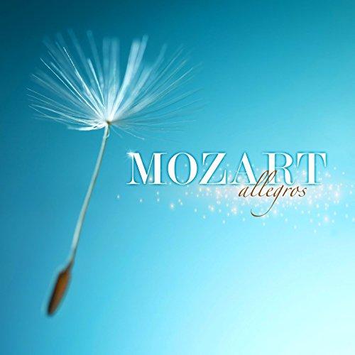 symphony-no-40-in-g-minor-k-550-i-molto-allegro