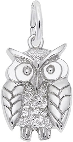 Rembrandt Charm Owl - Rembrandt Wise Owl Charm - Metal - Sterling Silver