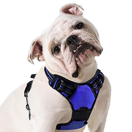 Eagloo Dog Harness No