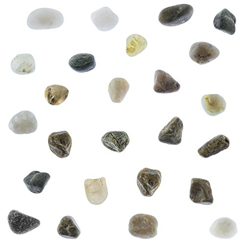 Super Z Outlet Tiny Miniature Fairy Garden Beach Rock Pebbles Collection for Art & Craft Project, Outdoor & Indoor Home Garden Decoration, Party Favor, Invitation (1 Pound Bag) -
