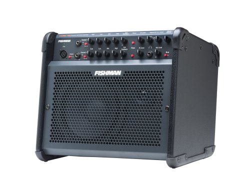 Fishman Loudbox 100 (Loudbox 100 Acoustic Amplifier)