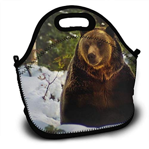 Dejup Lunch Bag Wild Bear Tote Reusable Insulated Lunchbox, Shoulder Strap with Zipper for Kids, Boys, Girls, Women and Men -