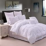 Arachnes Needle Pinch Pleat Comforter Set, 8 Pieces Decorative Ultra Soft Pintuck All Season Bed in a Bag - White Queen