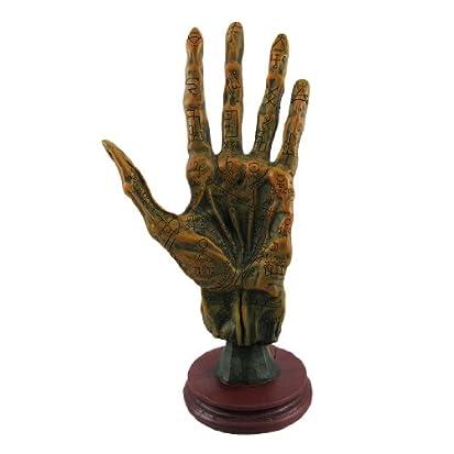 Alchemy Mummified Palmistry Hand Gothic