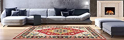 AREA RUGS - Anti-Bacterial Decorative Modern Contemporary Designs for Living Room Bedroom Kitchen Home Entrances - 63-inch-by-87-inch, Olefin FIBER, Frieze YARN - (Indian Design Throw Rugs)