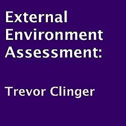 External Environment Assessment
