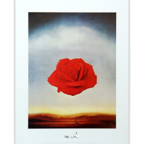 (Meditative Rose by Salvador Dali. Fine Art Print Poster 11 x 14)