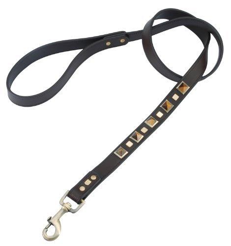 Tiger Eye Rock & Roll Leather Dog Leash - Large