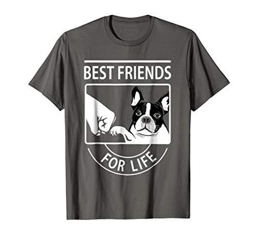 Boston Terrier - Best Friend For Life