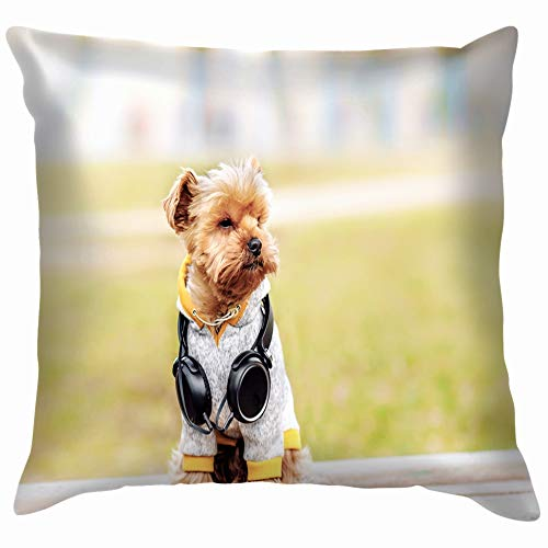 Yorkshire Terrier Sitting Listening Music On Animals Wildlife Dog Parks Outdoor Throw Pillow Case Cushion Cover Pillowcase Watercolor for Couch 20X20 Inch