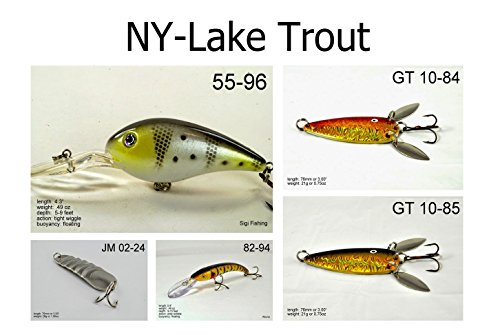Akuna LT5A Lake Trout Fishing Lure for USA 50 States (Pack of 5), New York (Best Pike Fishing In New York)