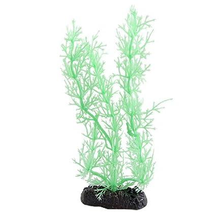 Amazon.com : eDealMax Las plantas Jardin Fish Tank Paisajismo acuático Artificial de plástico, Fluorescente Verde : Pet Supplies