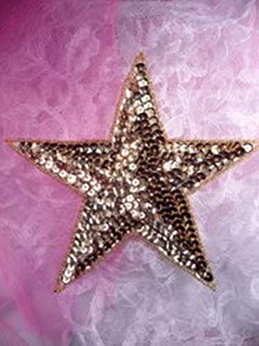 Six inch Gold Star Beaded Sequin Applique Patch 6 Iron on Clothing Sewing DSKZZ-1721