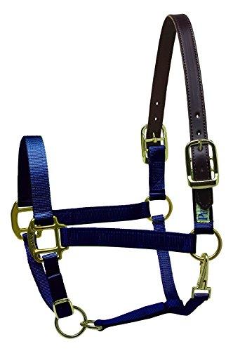 Perri's Premium Nylon Safety Halter, Horse, Navy