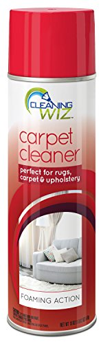 Pickup Accelerator - Cleaning Wiz Carpet Cleaner, 18 Fluid Ounce (Pack of 4)