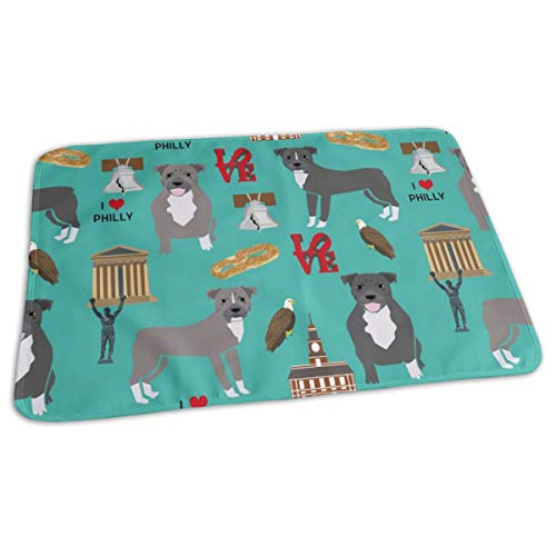 (Pitbulls in Philly - Pitbull Philadelphia, Travel, Dog, Us, Cities Design - Turquoise Baby Portable Reusable Changing Pad Mat 19.7x27.5 inches)