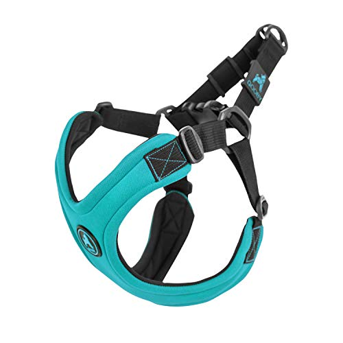 Gooby - Escape Free Sport Harness, Small Dog Step-in Neoprene Harness for Dogs That Like to Escape Their Harness, Turquoise, Small
