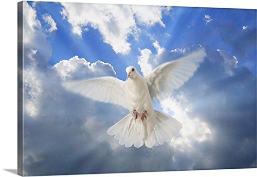 Don Hammond Premium Thick-Wrap Canvas Wall Art Print entitled A Dove In The Sky by Canvas on Demand