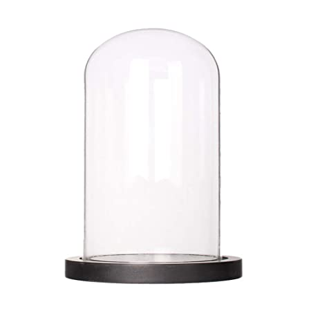 Artlass Glass Cloche Bell Jar Display Dome with Black Wooden Base Dia 6 x H 10
