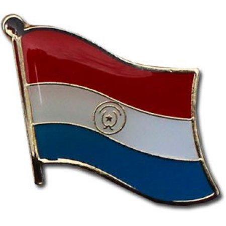 Paraguayan Flag Metal Suit Jacket Lapel Pin with Gold Clasp/Bandera Nacional de Paraguay Boton Travel Pins (Paraguay pin, 0.75' x 0.75')
