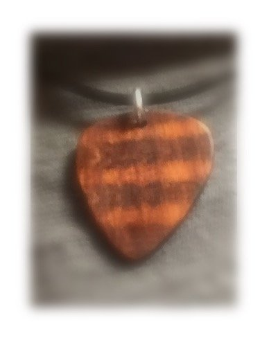 Snake Wood Guitar Pick Charm On 17-18