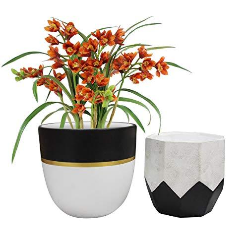 Ceramic PlantFlower Pot - 6.3