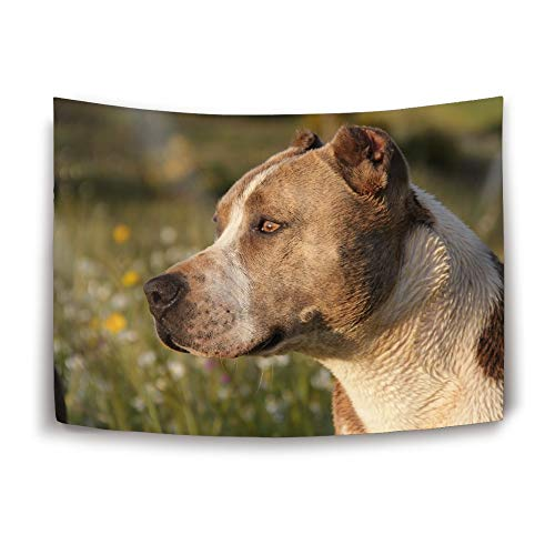 efyh Art Tapestry Wall Hanging, American Pit Bull Terrier Wall Tapestry Home Decorations for Bedroom Dorm Decor in 60X40 Inches