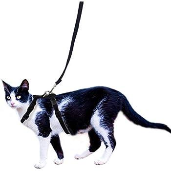 OFPUPPY Adjustable Cat Harness and Leash Set Velvet and Nylon Lead for Kitty Kitten Walking Black