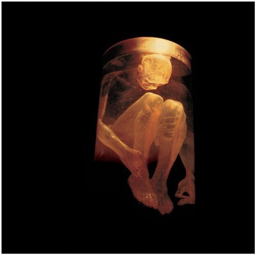 Nothing Safe - The Best of the Box by Alice In Chains (2015-08-03)