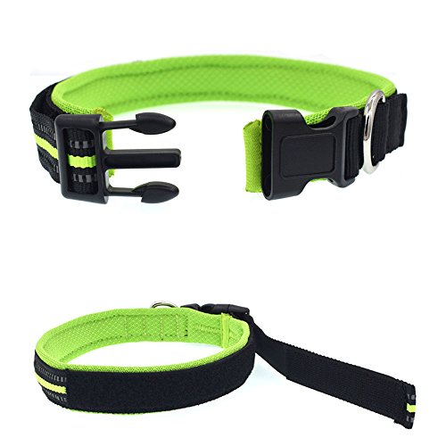 QiTeng Solid Color Nylon Dog Collar, Matching Leash & Harness Available Separately Green M Christmas Displays In Philadelphia