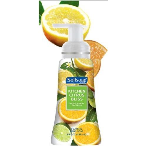 8 Oz Foaming Hand Soap (Softsoap Kitchen Citrus Bliss Foaming Liquid Hand Soap, 8 Ounce -- 6 per case.)