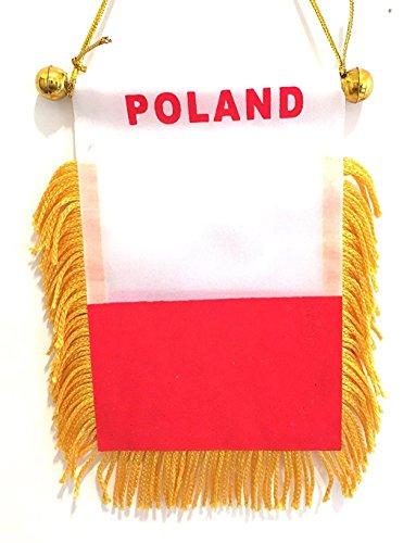 Rear Polish - 1