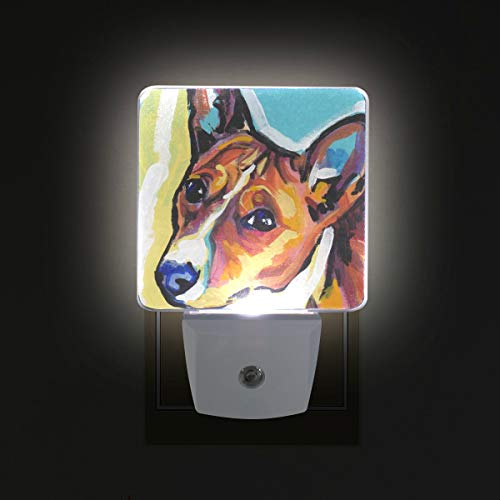 Basenji Ornaments - Basenji LED Night Lights with Auto Dusk to Dawn Sensor, Plug-in Warm White Wall Lights for Kids Room