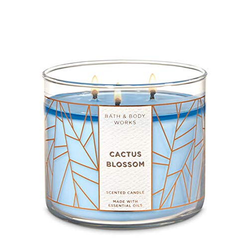 White Barn Bath & Body Works 3 Wick Candle Cactus -