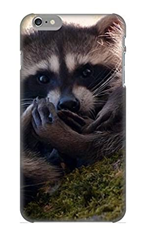 Anettewixom Iphone 6 Plus Well-designed Hard Case Cover Animal Raccoon Protector For New Year's (Year Of The Raccoon)