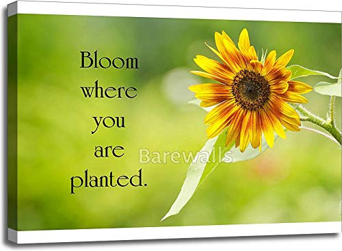 Barewalls Inspirational Quote by Mary Engelbreit with A Pretty Sunflower in Full Bloom in The Summer. Gallery Wrapped Canvas Art (30in. x 40in.) ()