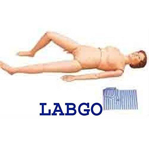 LABGO Nursing Manikin Anatomical Human Model Education by LABGO