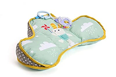 Taf Toys Baby Tummy Time Pillow   Perfect For 2-6 Months Old Babies, Enables Easier Development & Easier Parenting, Natural Developmental, Comfortable Tummy Time, Ergonomic Design, Detachable Toys