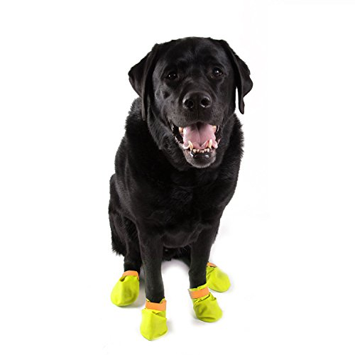 Disposable Dog Boot Protector - Yellow/Orange- 16 Pack- Large by Paw Control