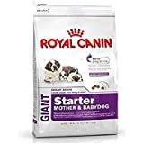 Royal Canin Giant Starter, 1 kg