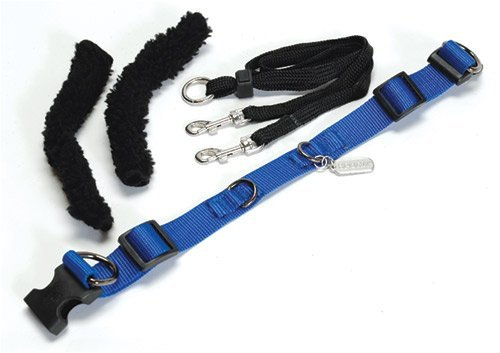 - Sporn Pet No Pull Halter - Blue Xlarge(Size: 23 - 33 Inches)