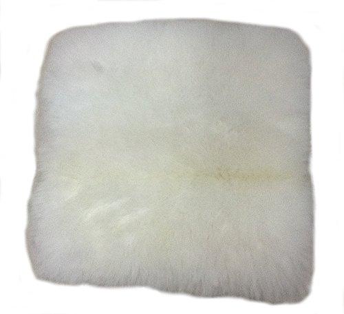 Alpakaandmore, 100% White Alpaca Fur Pillow Cover, 15.7 X 15.7 (White)