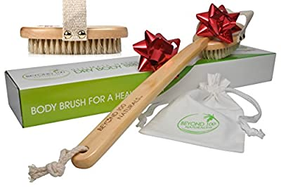 Best Cheap Deal for 100% Natural Body and Face Brush Set for Dry Brushing Skin - Boar Bristles- Long Handle - Exfoliate, Reduce Cellulite, Improve Circulation, Drain Lymph - Great GIFT - FREE Hair Brush & How-To e-book from Beyond 100 - Free 2 Day Shippin